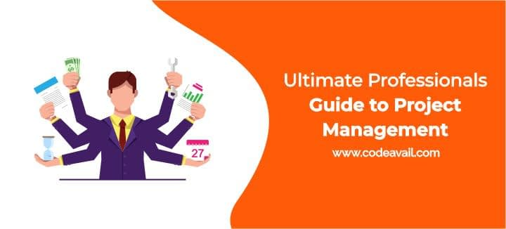 Ultimate Professionals Guide to Project Management