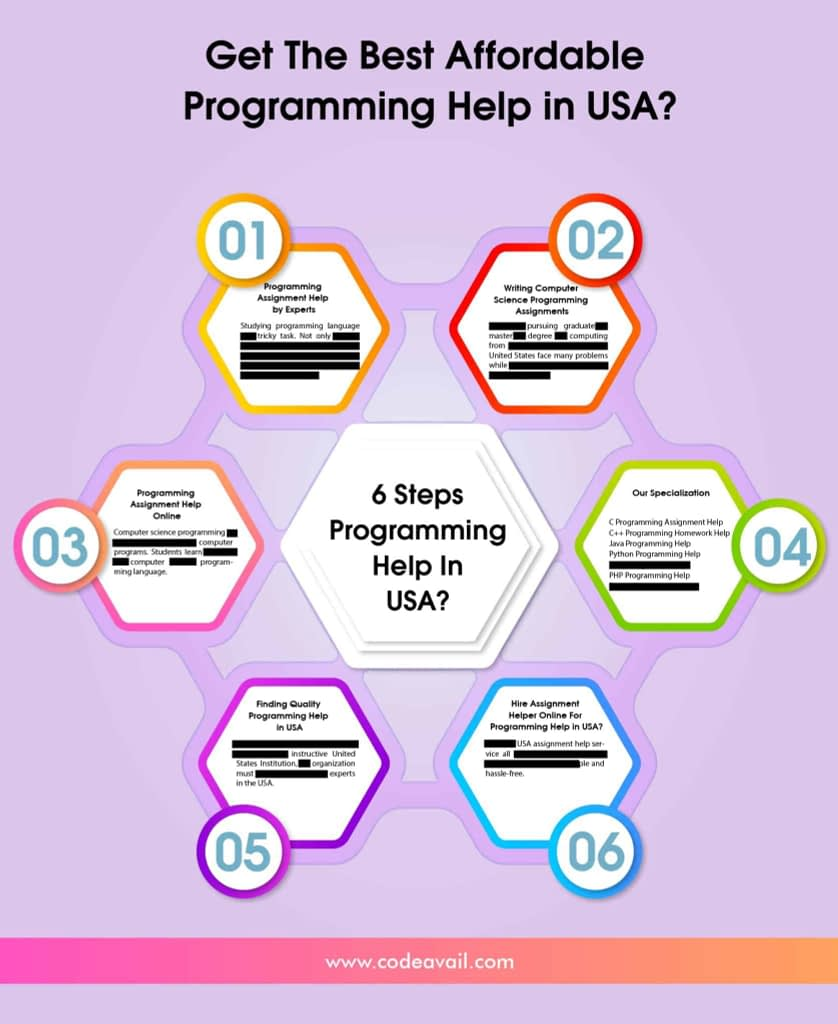 the best Affordable Programming Help in USA