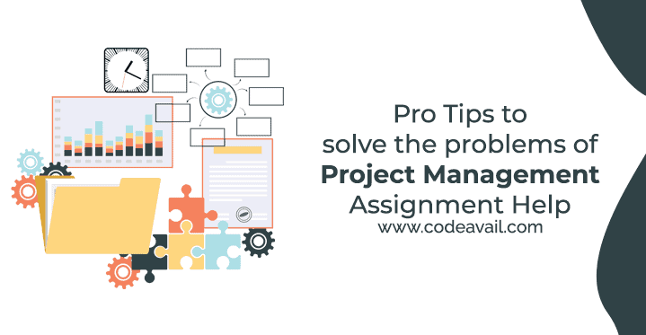 Pro Tips to solve the problems of Project Management Assignment Help