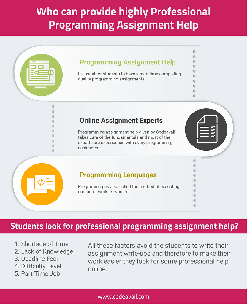 Who can provide highly Professional Programming Assignment Help-infographic