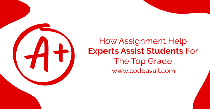 How Assignment Help Experts Assist Students For The Top Grade