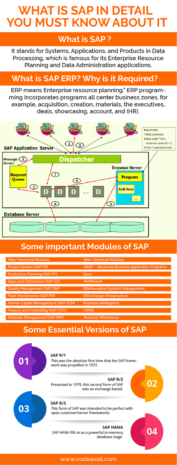 What Is SAP In Detail